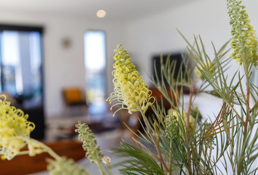 Calypso Bay Residence Evbuilt (14)